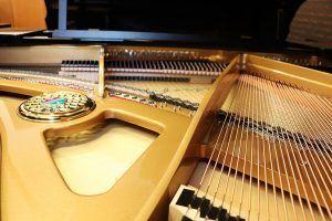Inner parts of Petrof piano