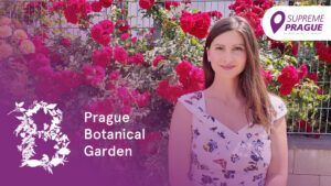 Cover photo, Prague Botanical Garden, Supreme Prague